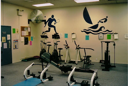 Ab Rollers, Bikes, Rowing, Treadmill and Stairmasters